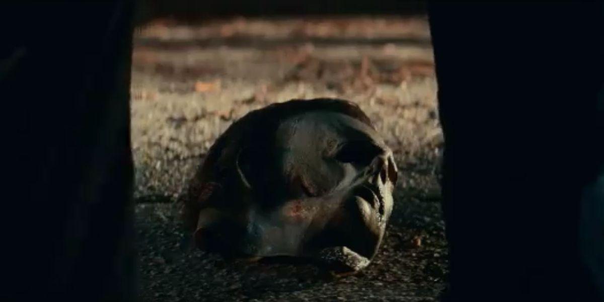 'Halloween Kills,' filmed in Wilmington, drops second teaser trailer