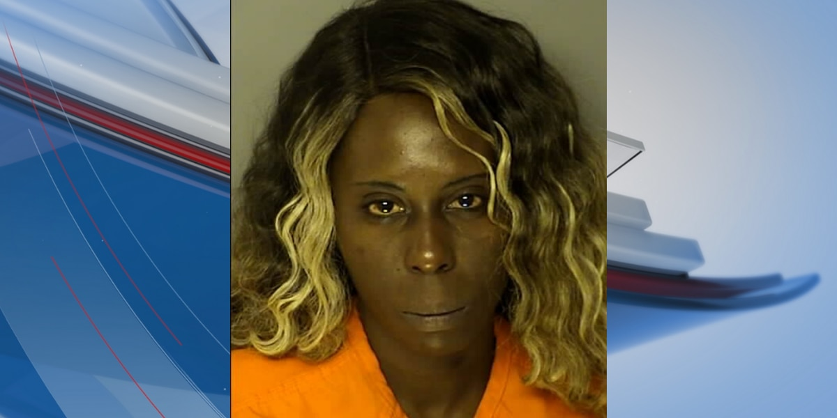 Conway woman accused of stabbing man multiple times over a phone, report states