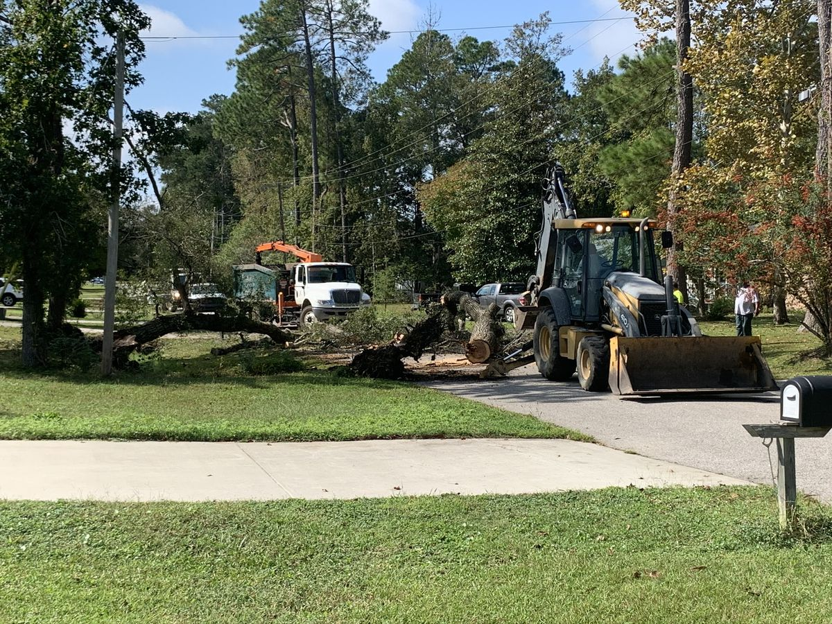Downed tree closes a portion of a Conway road