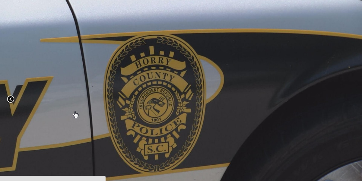 Court documents state 14 sexual harassment complaints against Horry County officers investigated