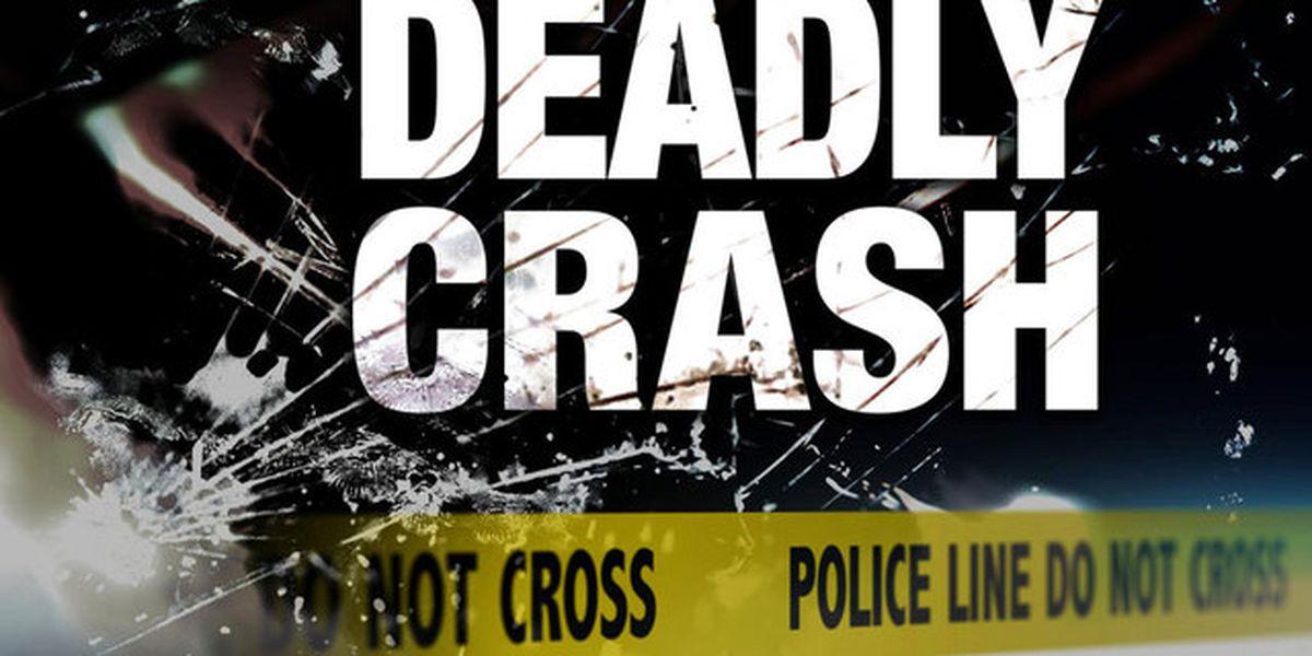Coroner identifies victim in two-car crash on I-20 in Darlington County