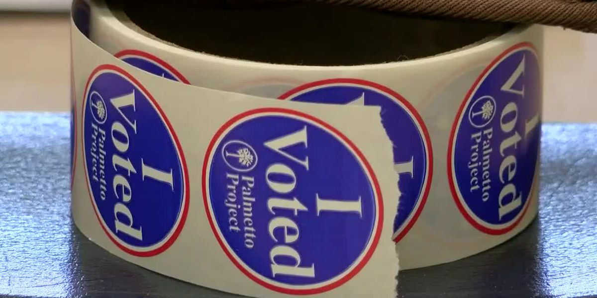 Unofficial results released in runoff elections along Grand Strand