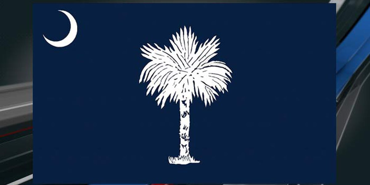 Palmetto pride: South Carolina state flag sparks debate