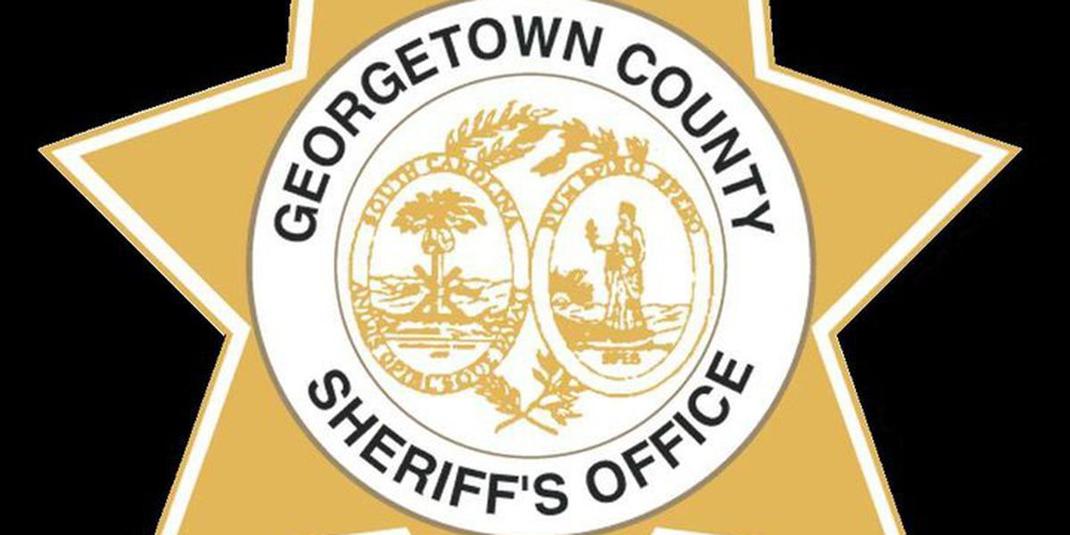 Deputies announce traffic safety checkpoints in Georgetown Co.