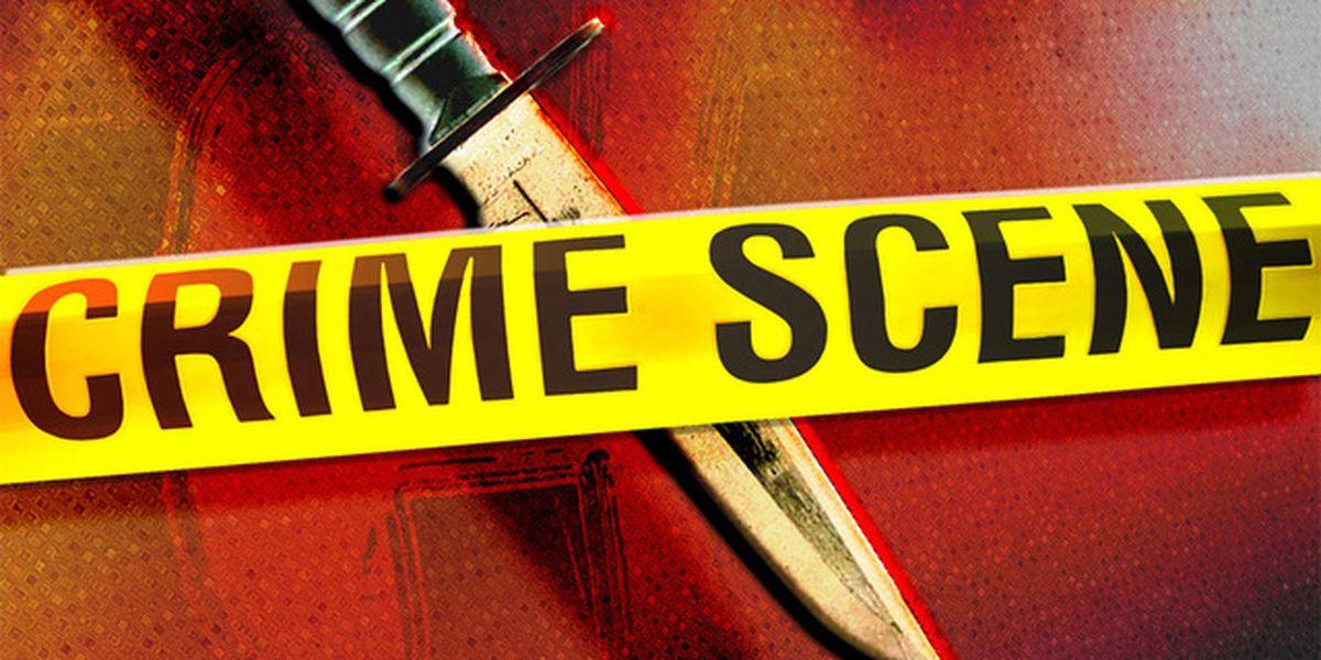 Man stabbed in the Pee Dee; suspect in custody