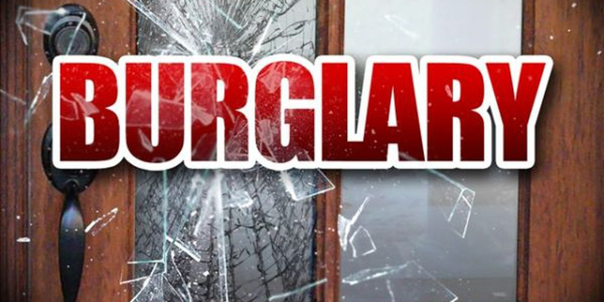 Two alleged burglary suspects caught in the act in Hartsville