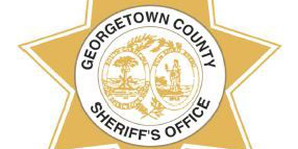 Georgetown County law officials to train at firing range