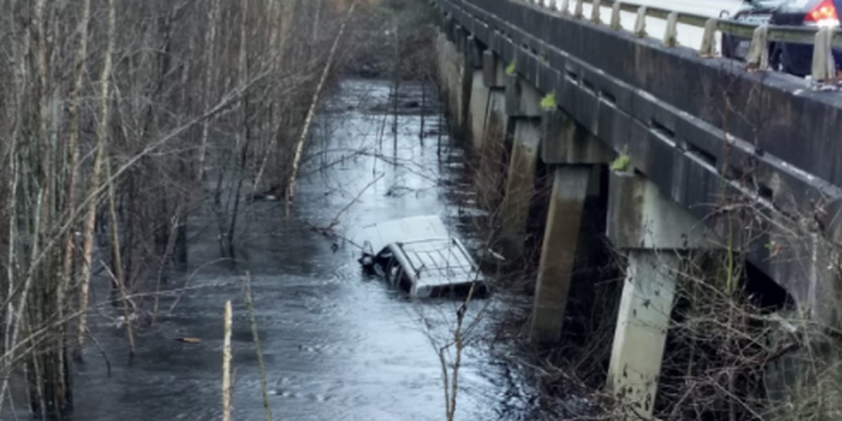 Vehicle ends up in water off Highway 501, sending five to hospital