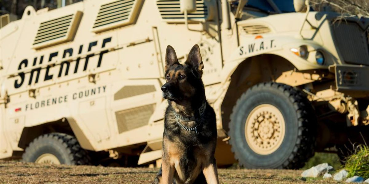 Florence County Sheriff's Office mourns K-9 officer