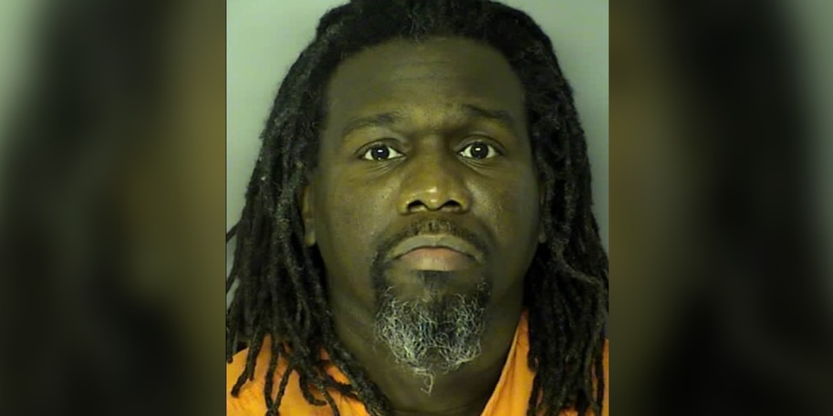 Horry County man pleads guilty to assaulting, robbing 71-year-old woman