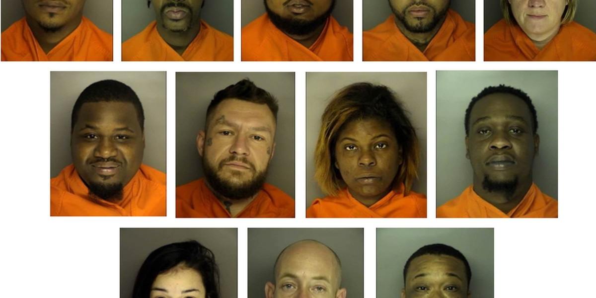 13 arrested on multiple drug charges after search warrants served in Conway