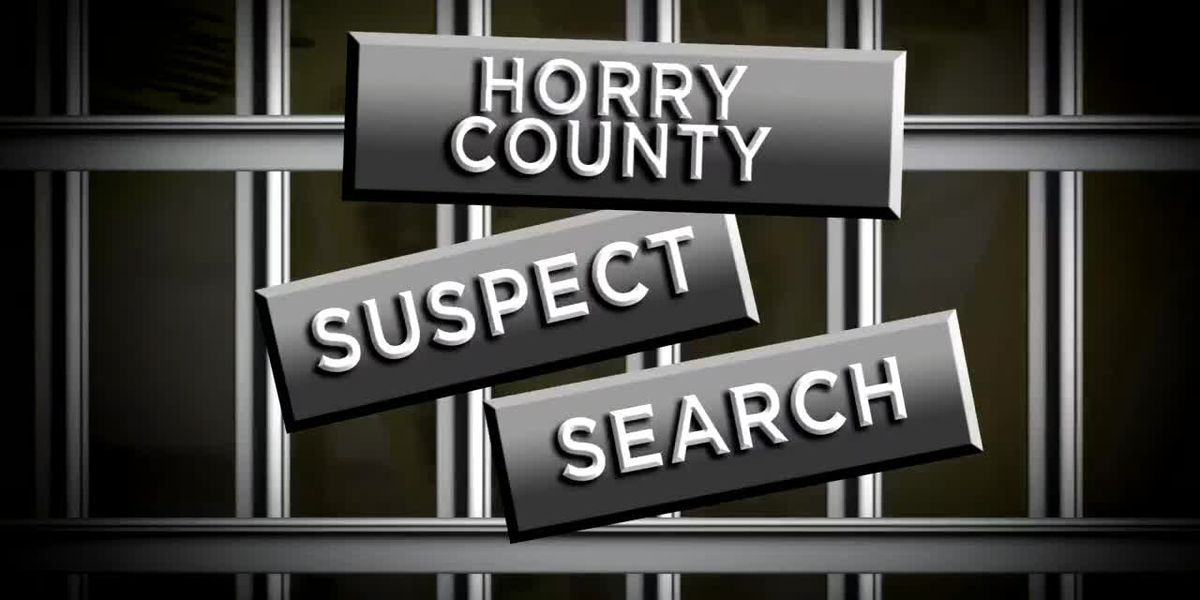 Suspect Search: 04-25