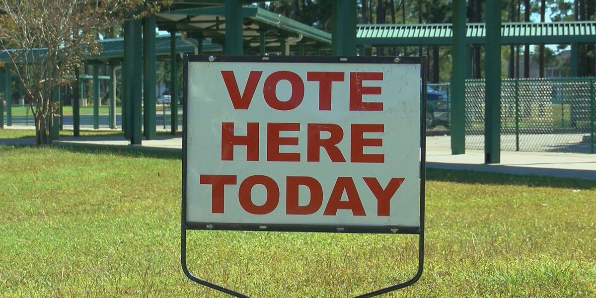 Voters talk about issues driving them to the polls
