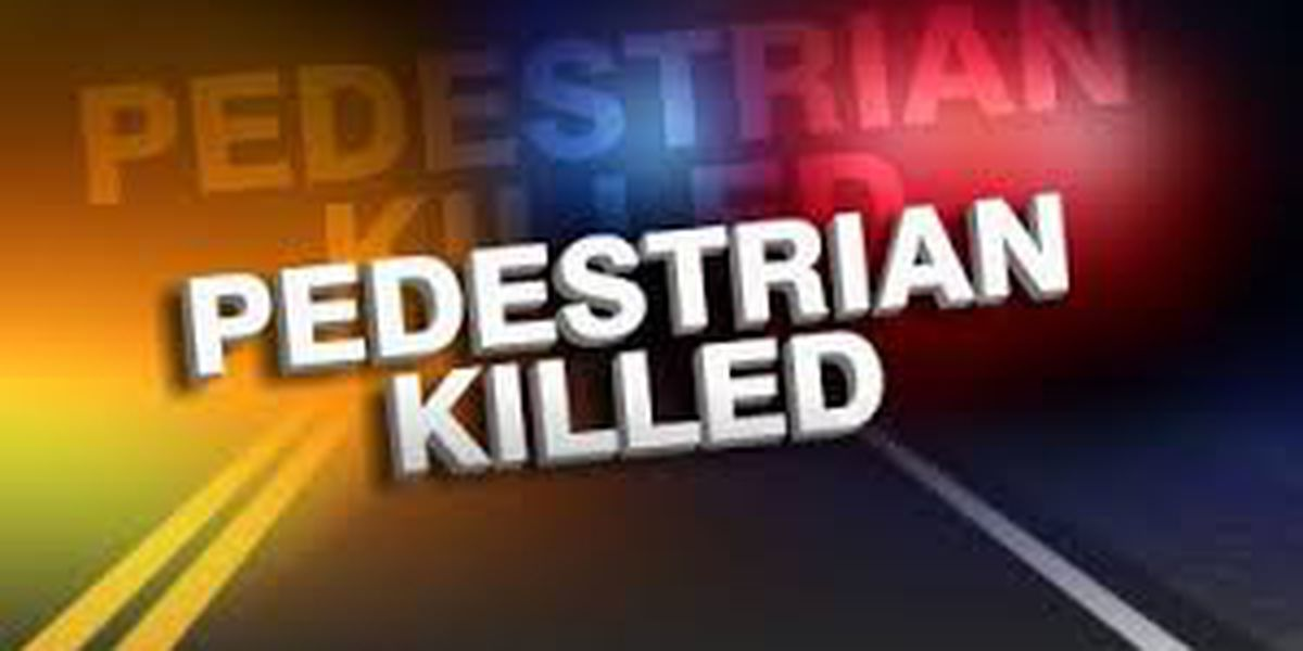 Pedestrian killed after being struck by vehicle in Lake City