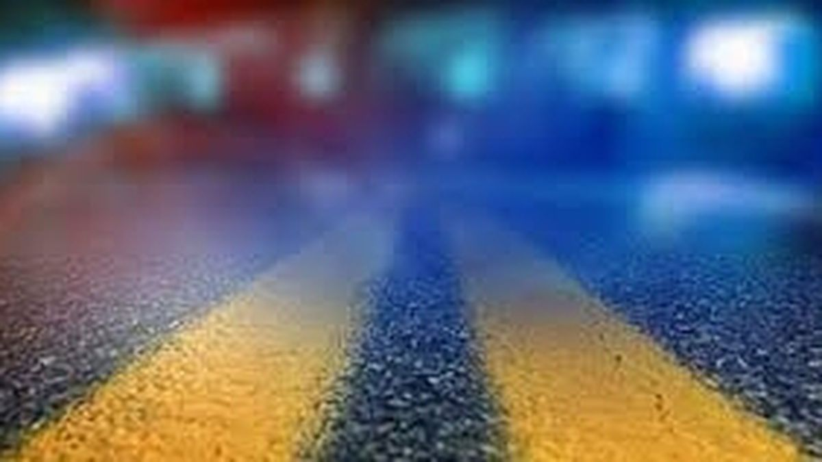 One killed in vehicle vs. pedestrian collision on Highway 501