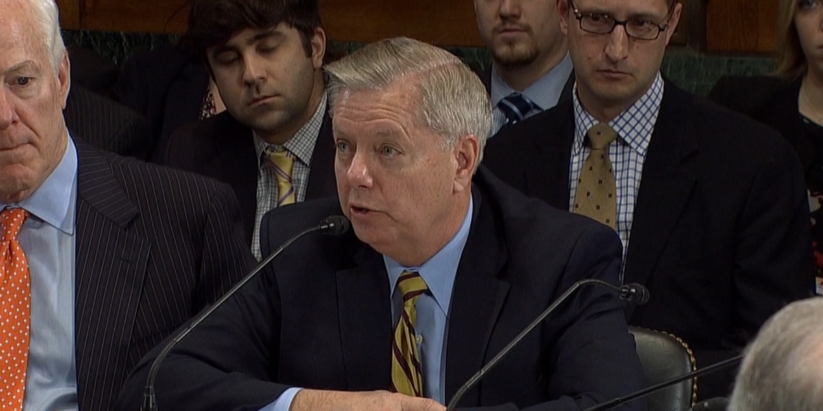 Graham on Ginsburg replacement: 'Important that we proceed expeditiously to process any nomination'