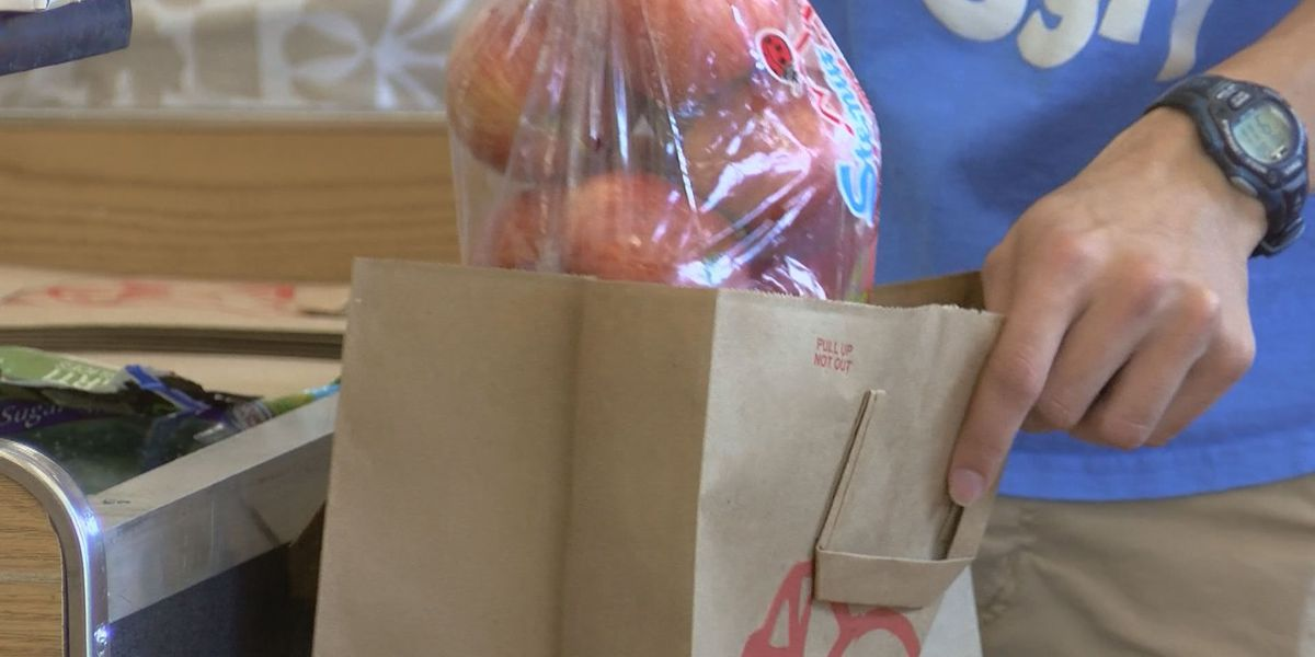 Surfside Beach plastic bag ban in effect, stores dealing with the change