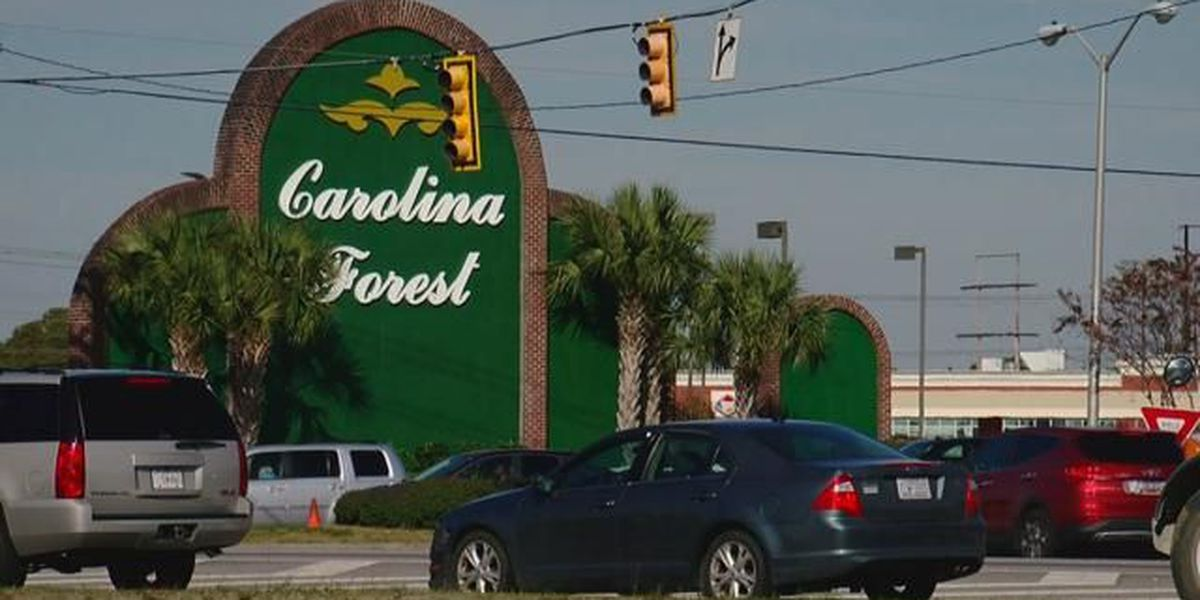 Carolina Forest residents can weigh in on incorporation debate at meeting next month
