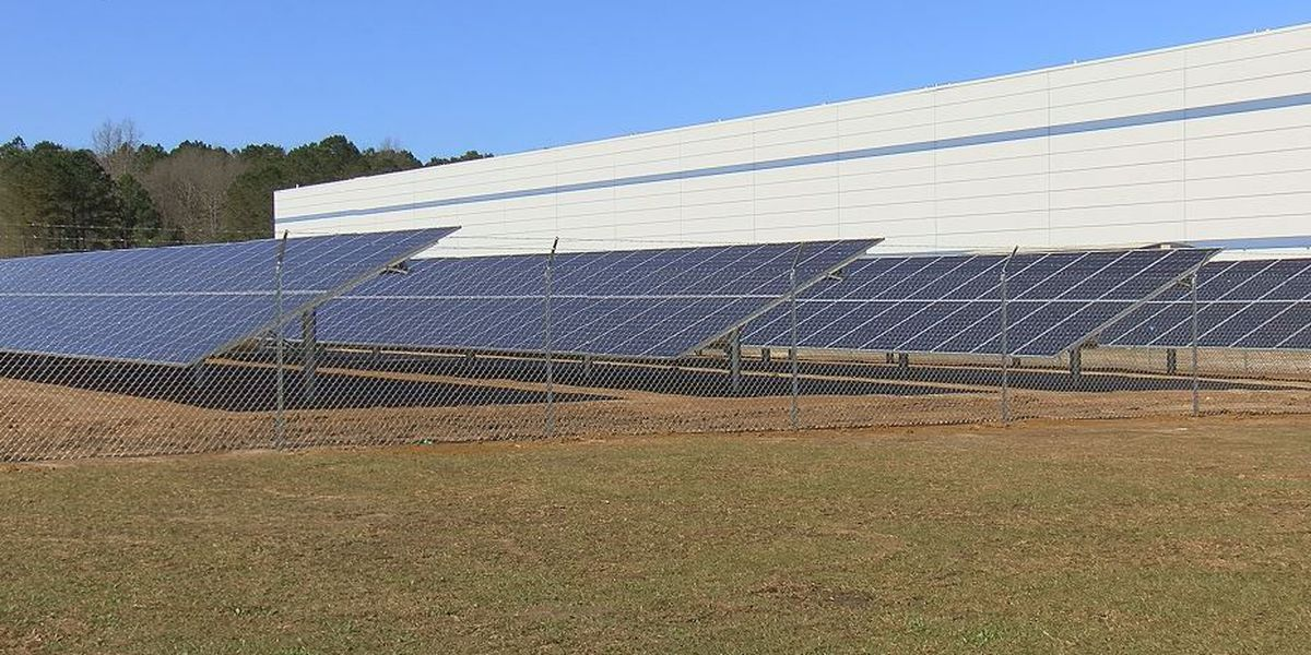 Florence company uses new solar field to power facility