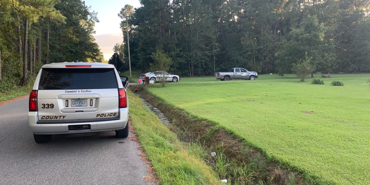 Horry County helps in pursuit that crossed state lines; 2 in custody