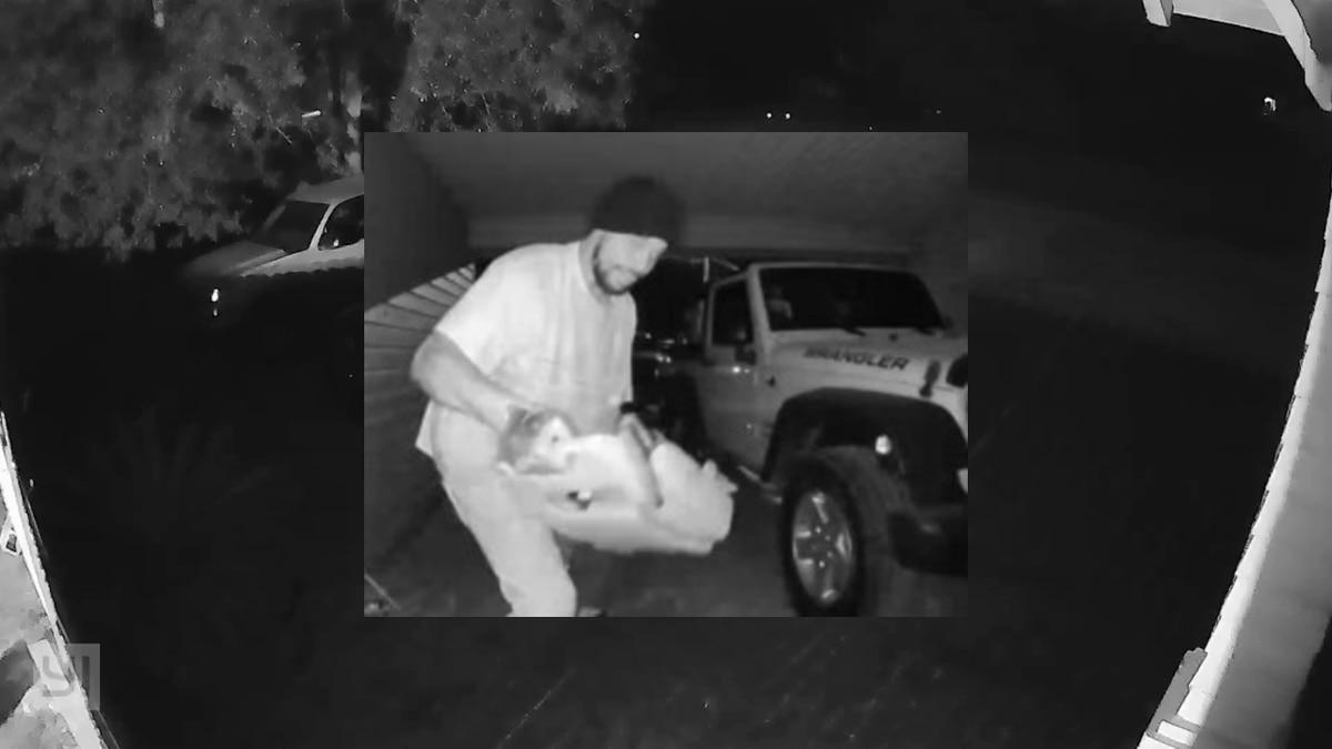 Deputies searching for suspect in Georgetown County vehicle break-ins