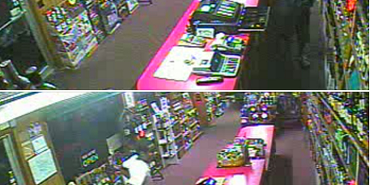 Lake City police seek burglary suspects