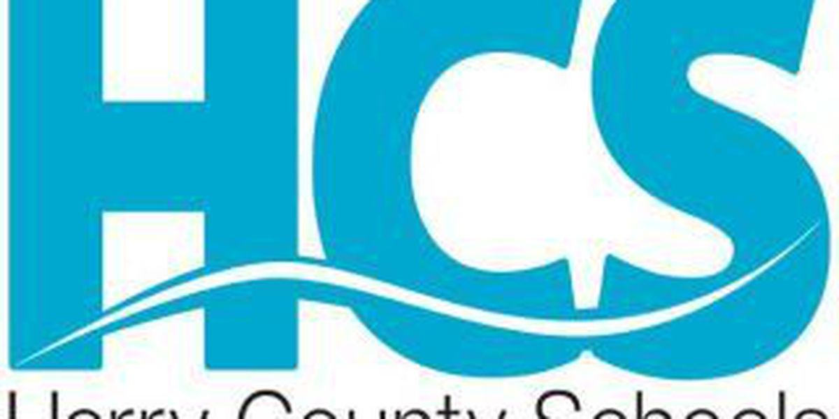 Horry County Schools spends nearly $50K for consultant