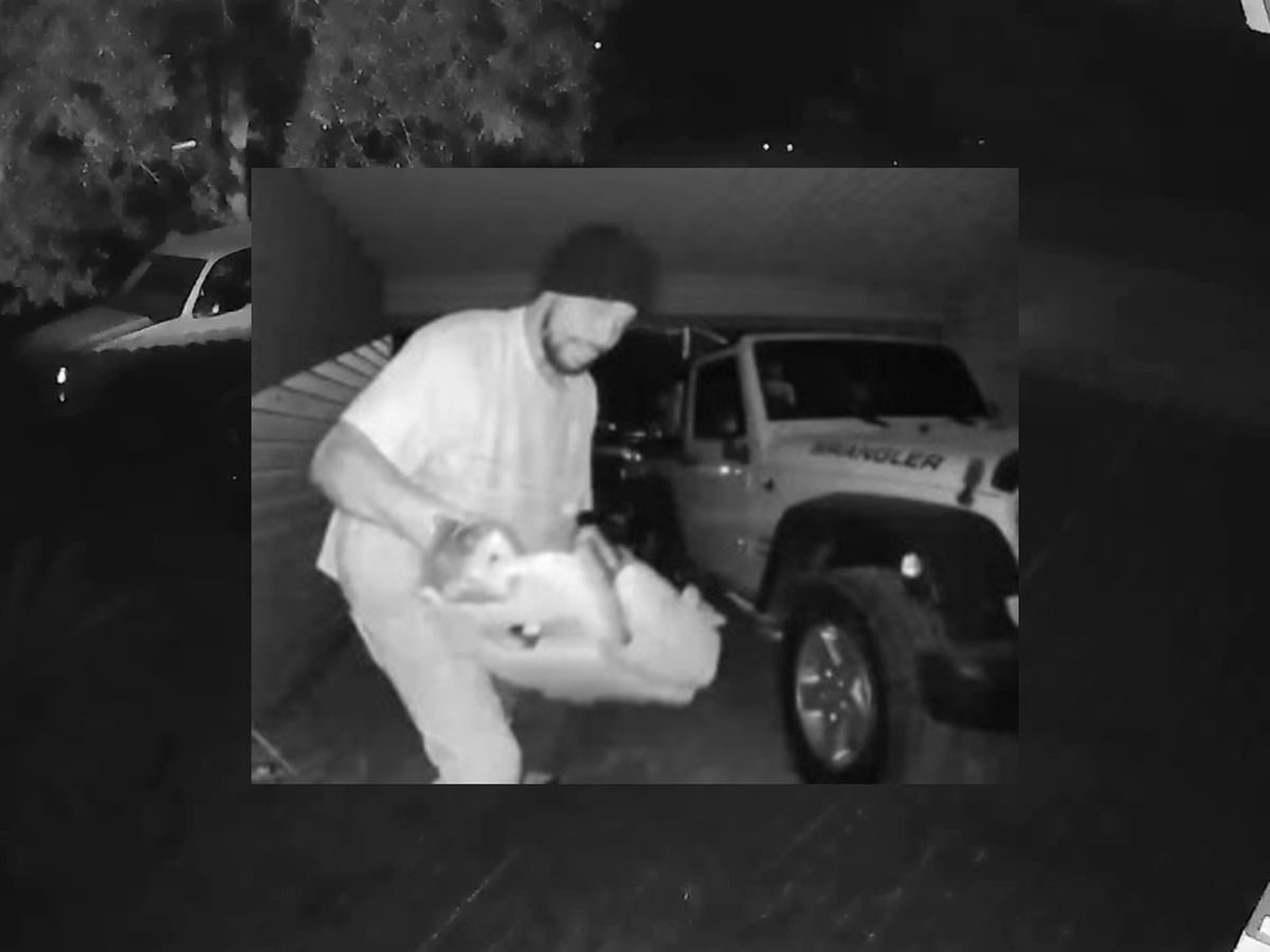 Deputies searching for suspect in Georgetown County vehicle break-ins