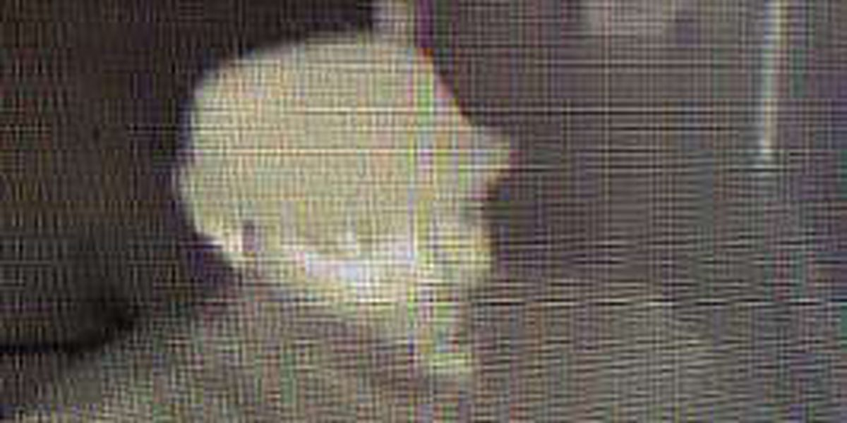Police searching for e-cig store burglary suspect