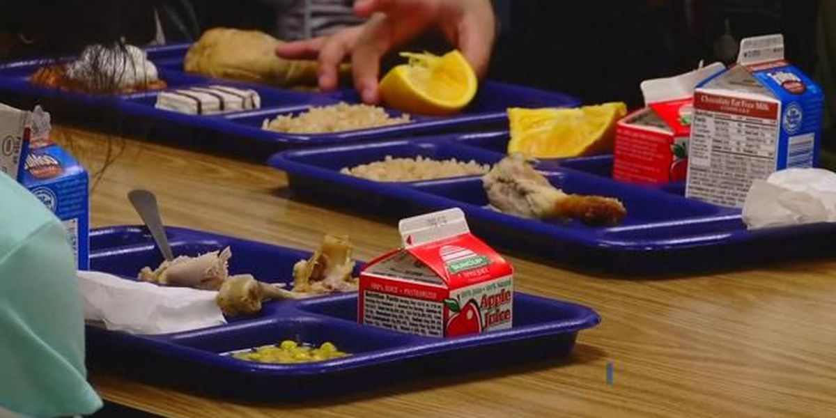 Free, reduced-price meals offered to many Horry County students