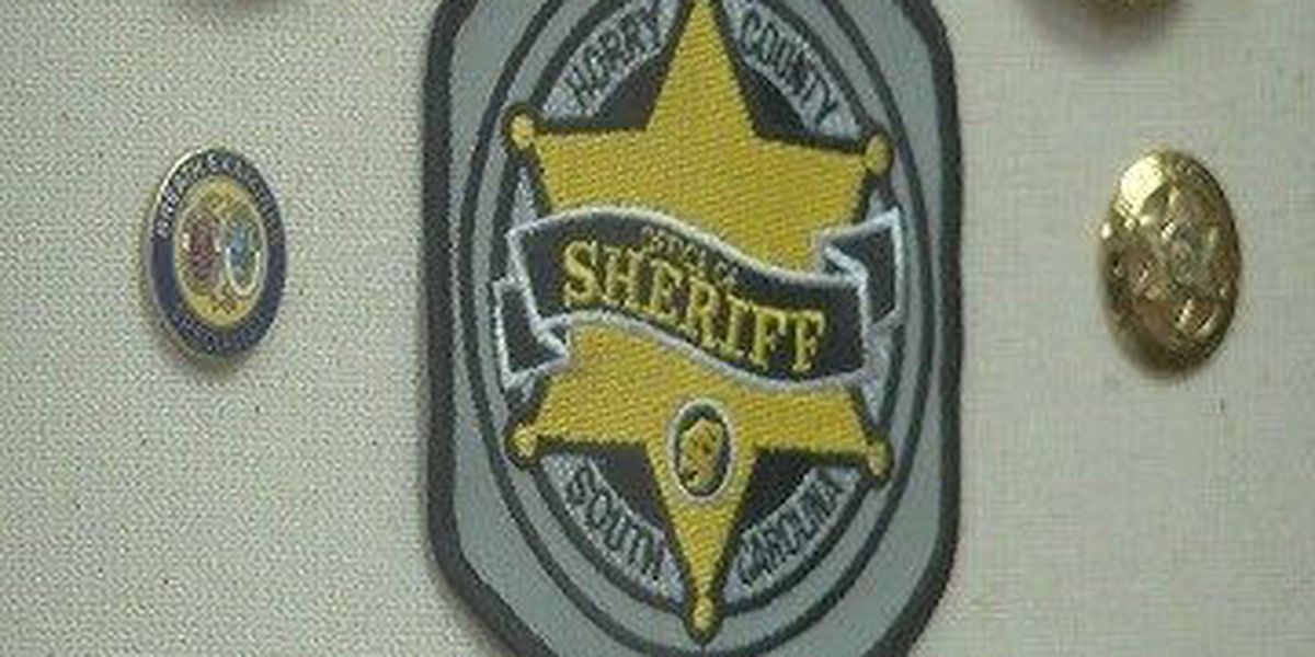 Horry County sheriff, police merger won't make ballot for general election