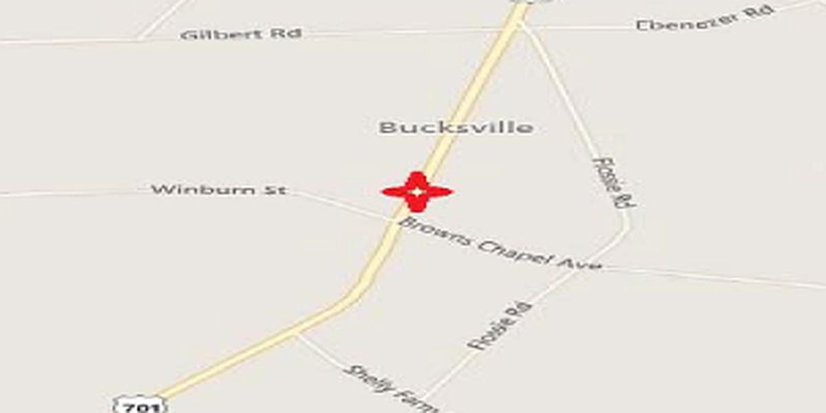 Victim of fatal hit-and-run collision near Bucksport identified