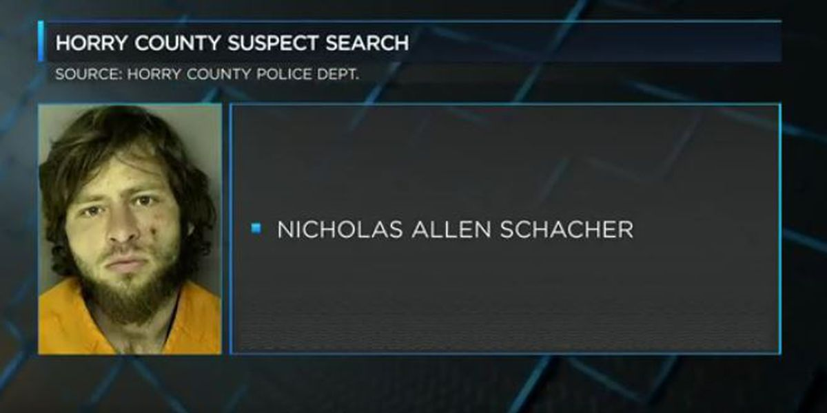 Suspect Search:Two suspects, each charged with assault and battery and each are on the loose