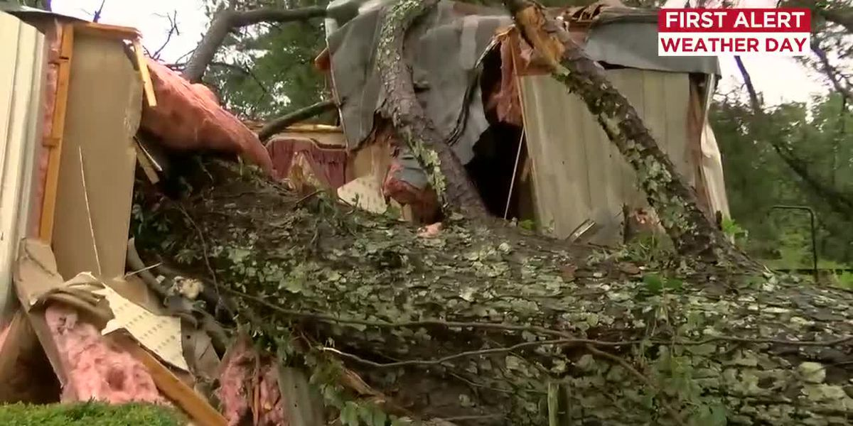 Tree crashes into Florence County home