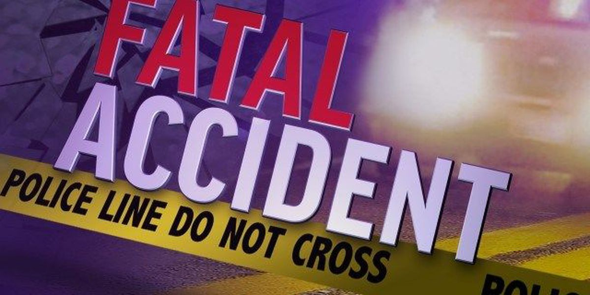 Victim identified in fatal Dillon County crash; man charged