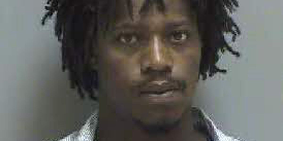 Darlington man wanted for allegedly stealing guns from home