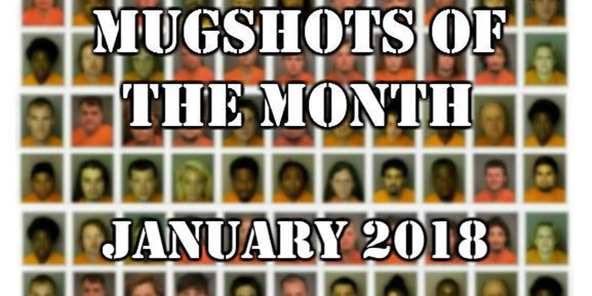 Mugshots of the Month - January 2018