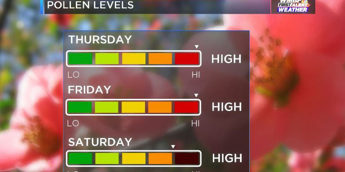 FIRST ALERT: Tree Pollen levels higher today and through the weekend