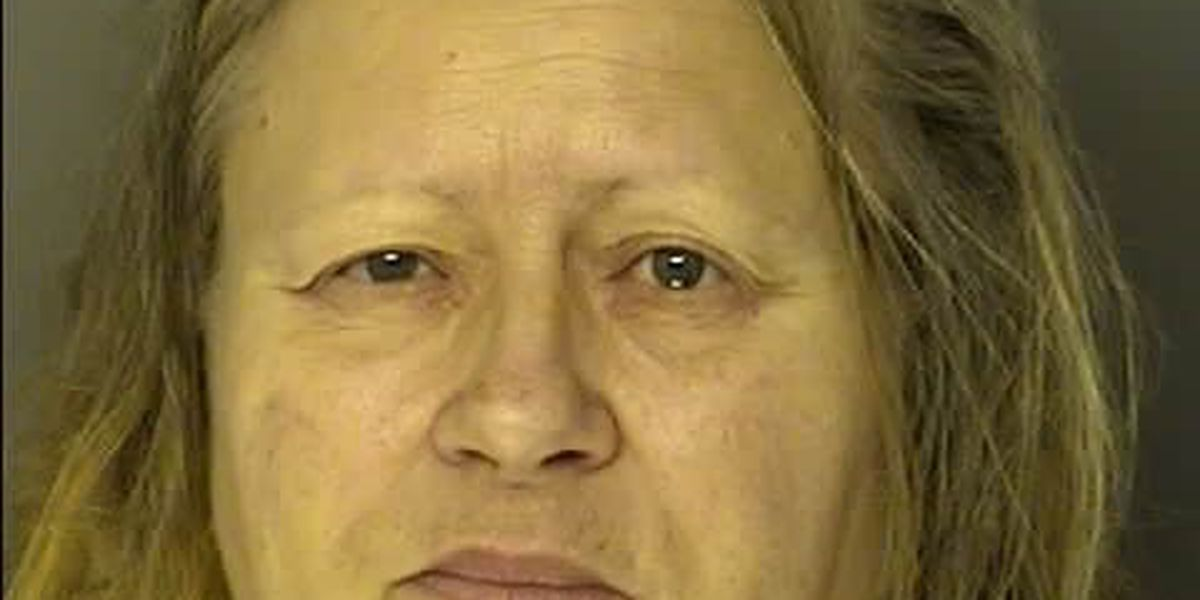 Woman charged with reporting false robbery at Conway business