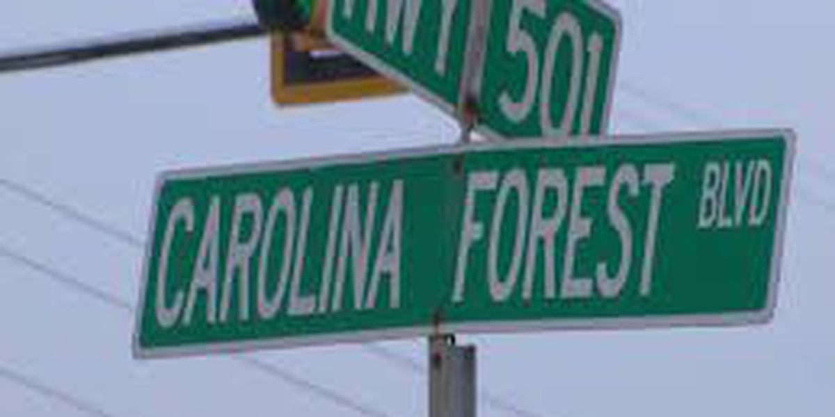 Consider This: County leaders should encourage, not stifle, growth in Carolina Forest