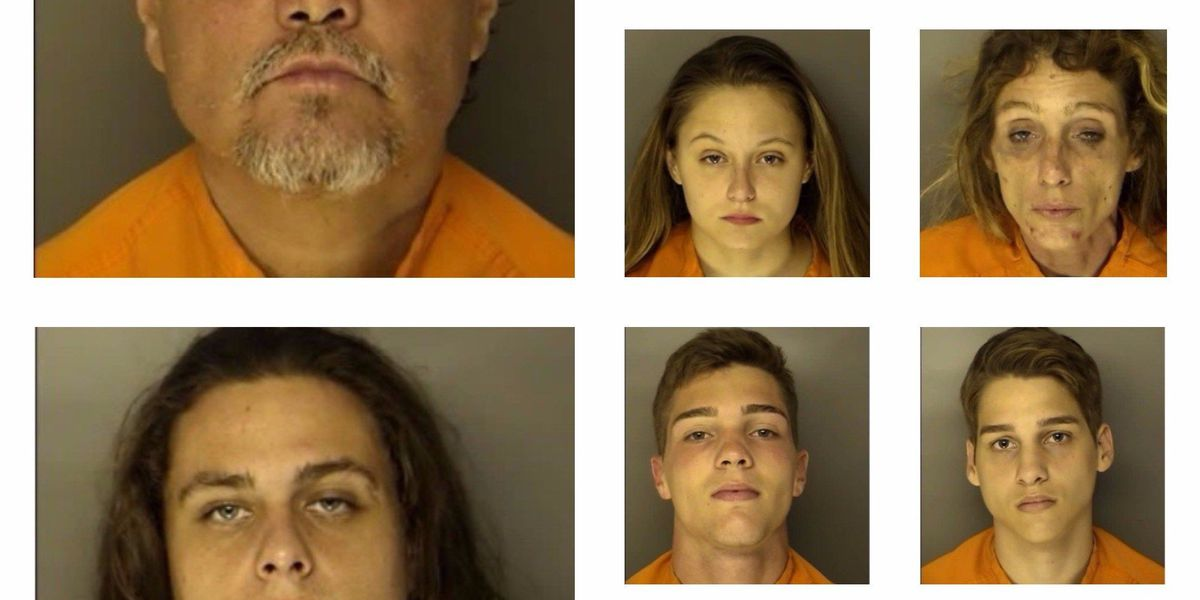 10 arrested on drug-related charges in Myrtle Beach-area operation