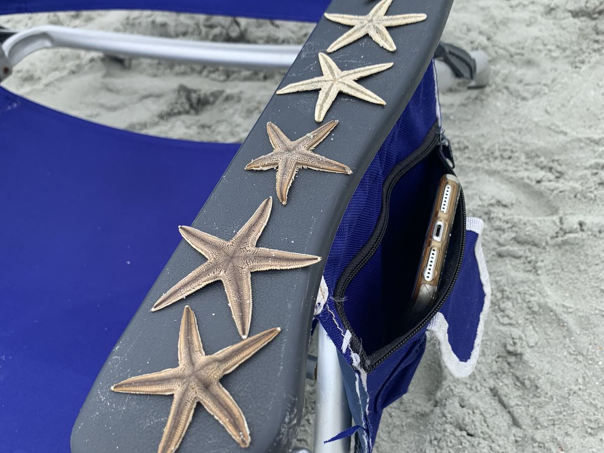 VIDEO: Hundreds of starfish seen covering Grand Strand beaches