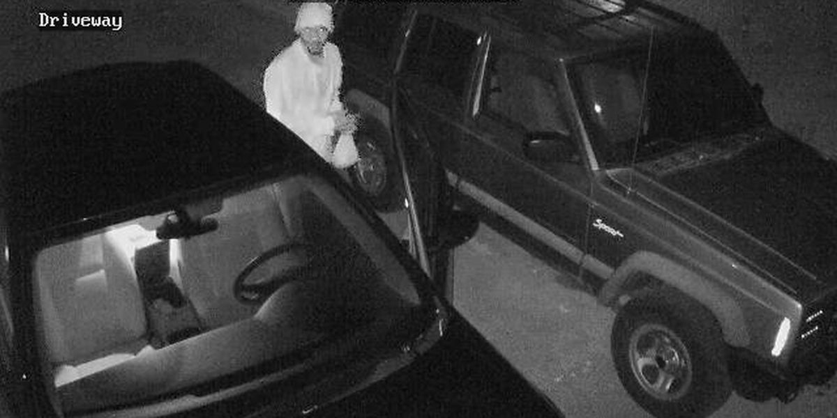 Lake City police searching for suspect in rash of car break-ins
