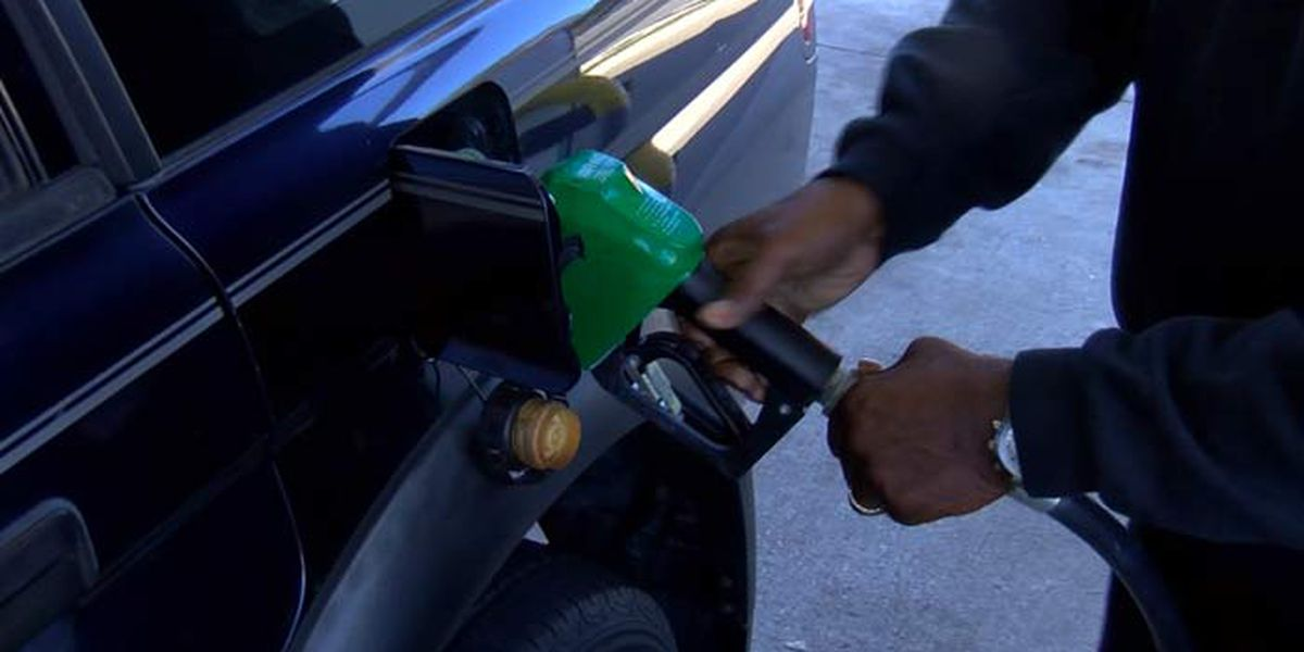 Gas prices steady after large February leaps