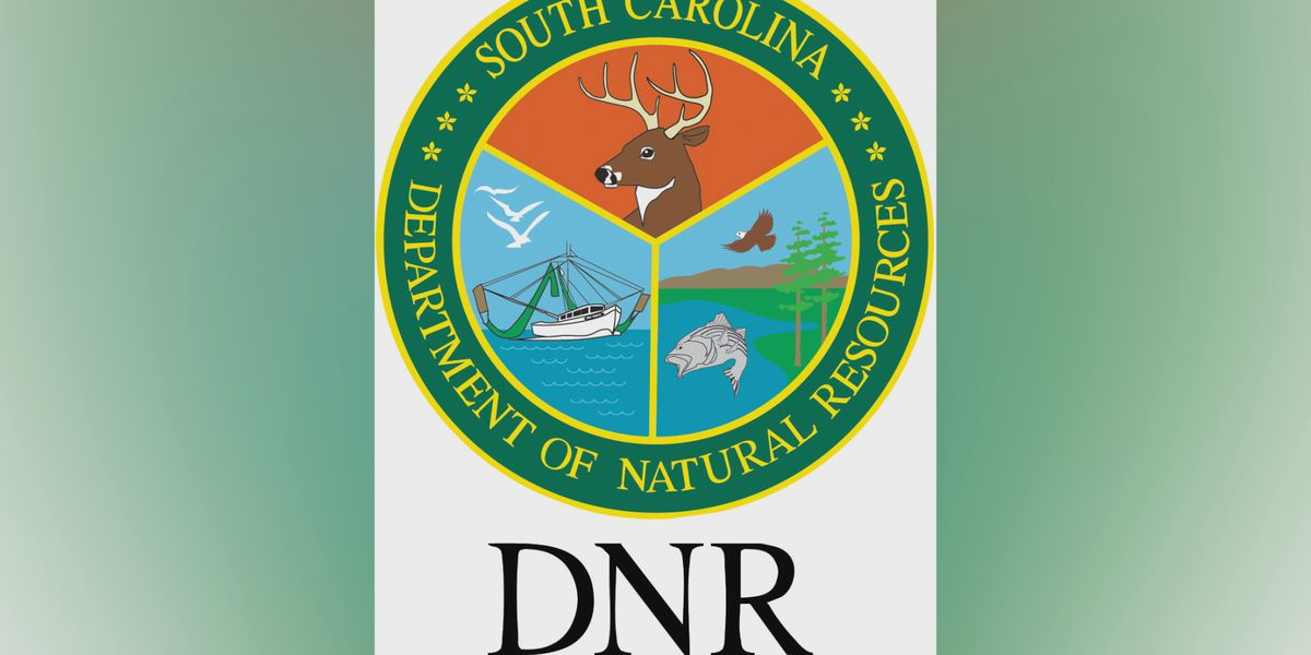 South Carolina wildlife agency to reopen offices to public