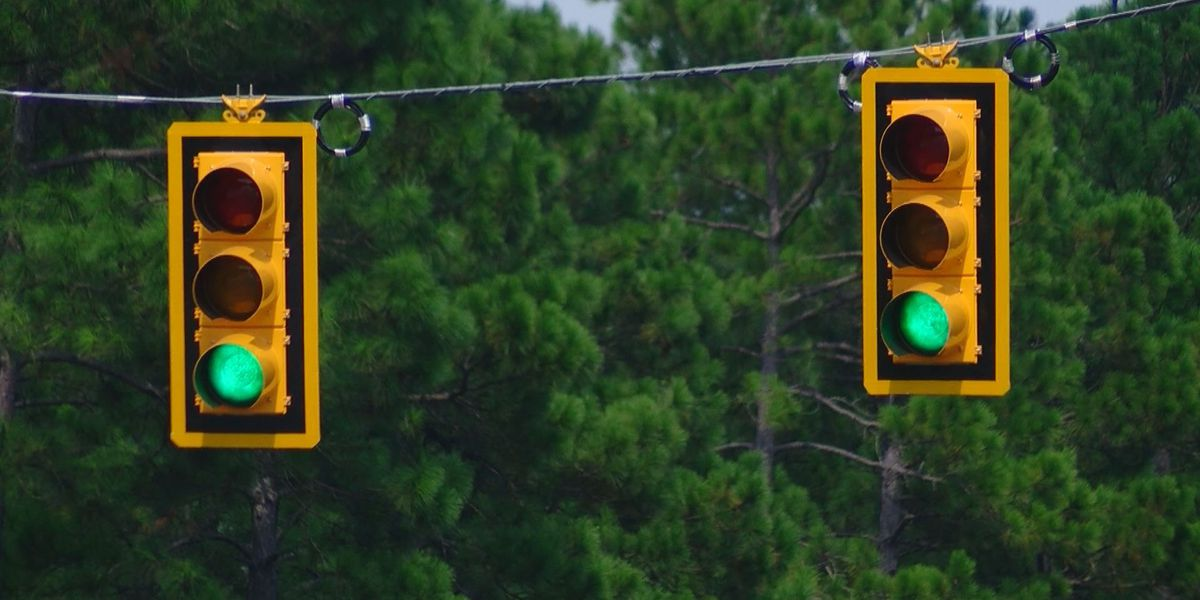 New traffic light on Carolina Forest Boulevard causes mixed reactions