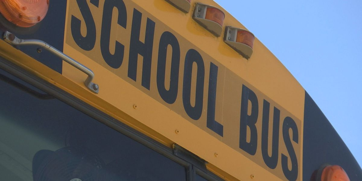 Horry County Schools to receive 25 new buses after Volkswagen settlement