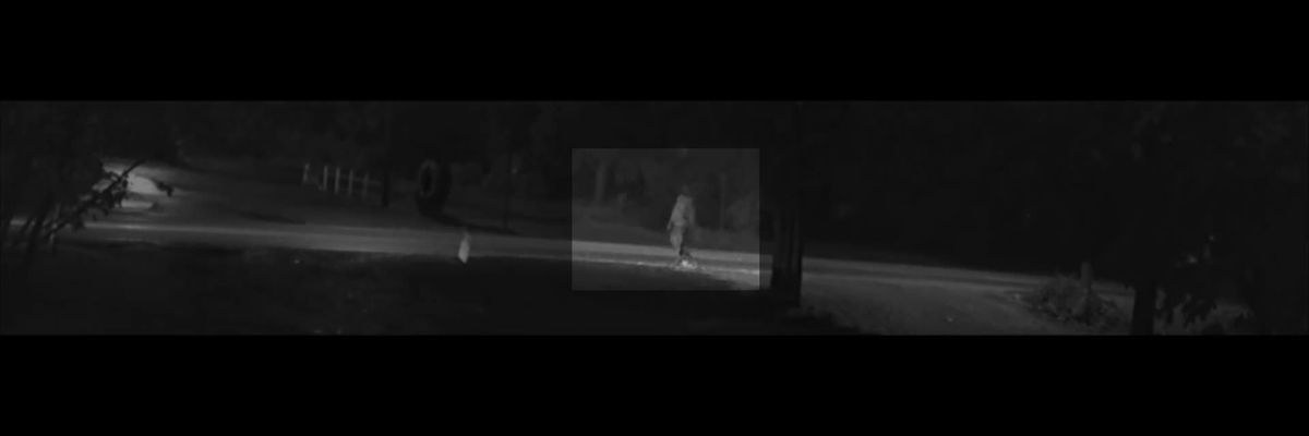 RAW: Investigators seek to identify person walking near site where NC girl was kidnapped - Video 1