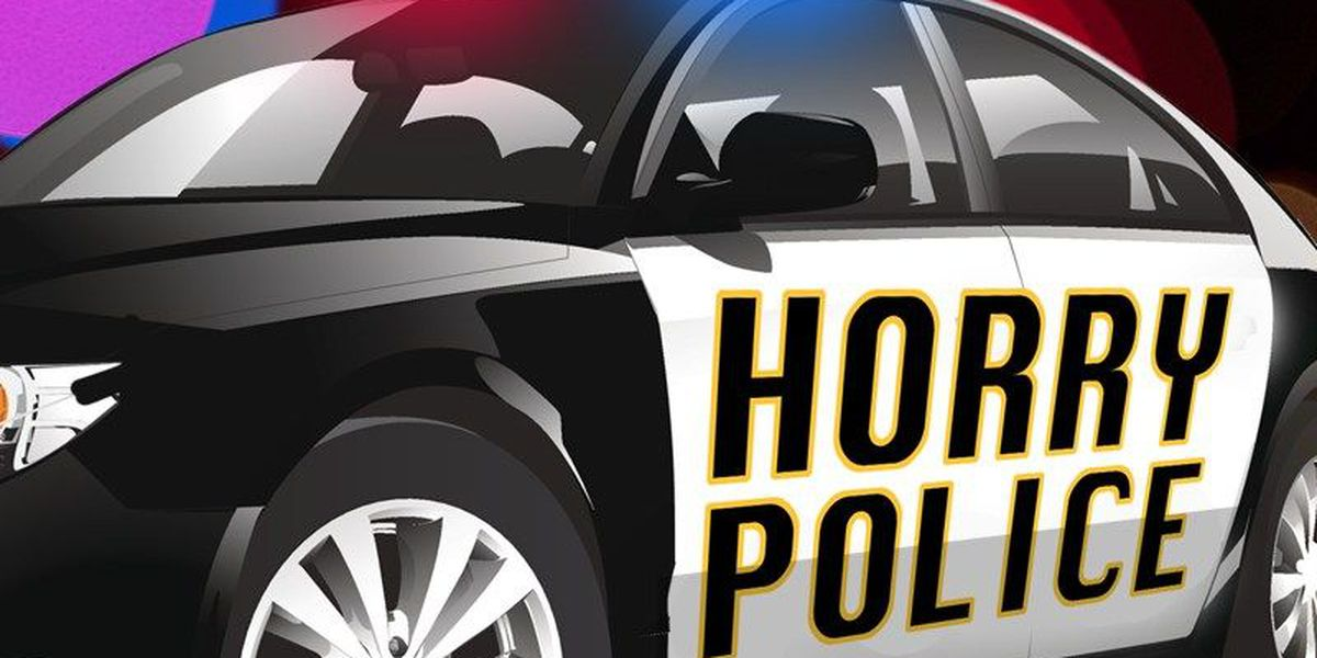 Reckless driver leads police on chase down Hwy 17