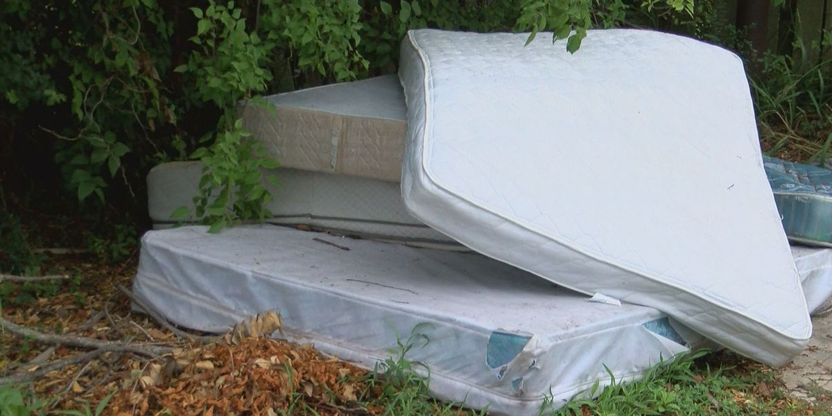City of Myrtle Beach works to put an end to illegal dumping